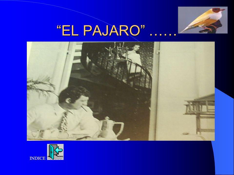 EL PAJARO …… INDICE