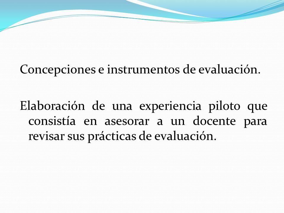 Concepciones e instrumentos de evaluación. Elaboración de una experiencia piloto que consistía en asesorar a un docente para revisar sus prácticas de