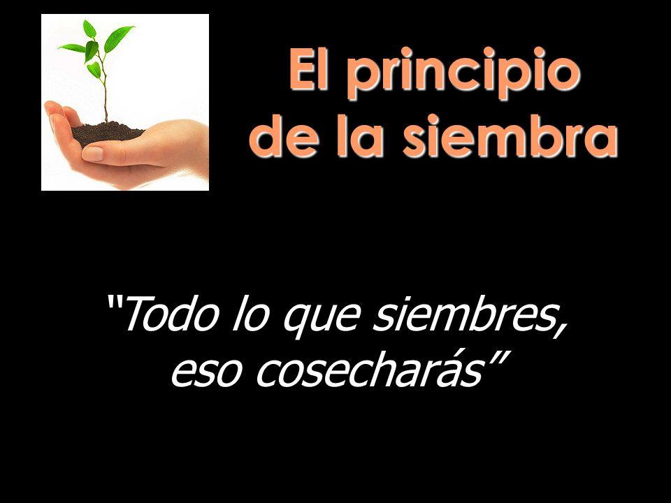 El principio de la siembra Todo lo que siembres, eso cosecharás