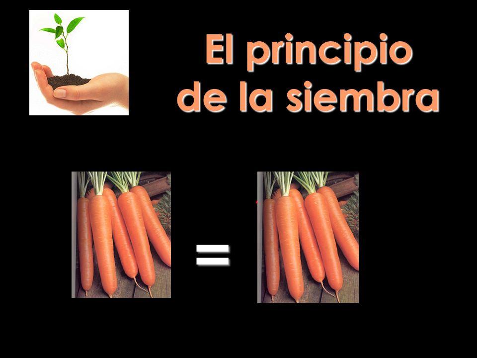 El principio de la siembra =