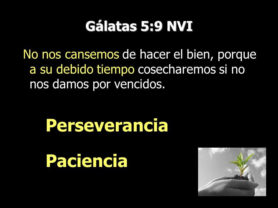 Gálatas 5:9 NVI No nos cansemos de hacer el bien, porque a su debido tiempo cosecharemos si no nos damos por vencidos. Perseverancia Paciencia