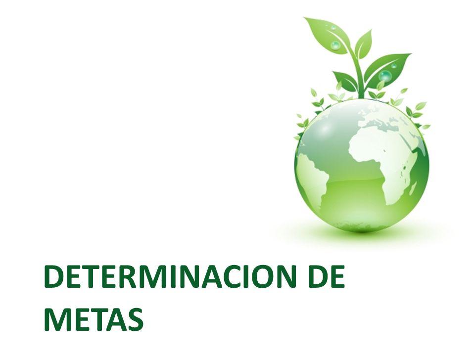 DETERMINACION DE METAS