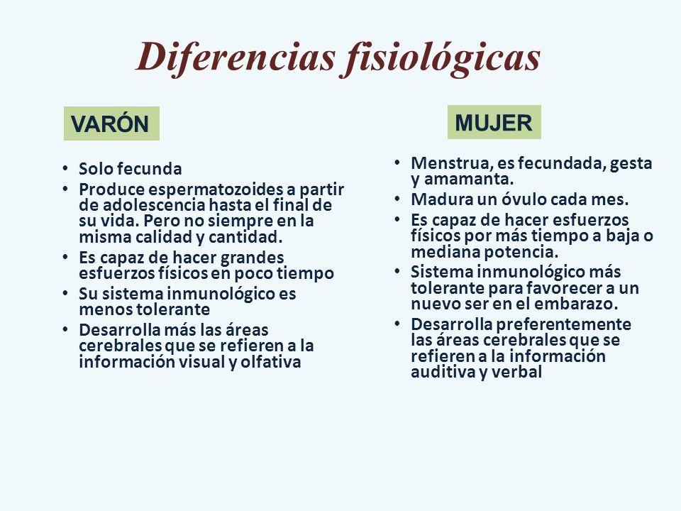 Diferencias fisiológicas Solo fecunda Produce espermatozoides a partir de adolescencia hasta el final de su vida. Pero no siempre en la misma calidad