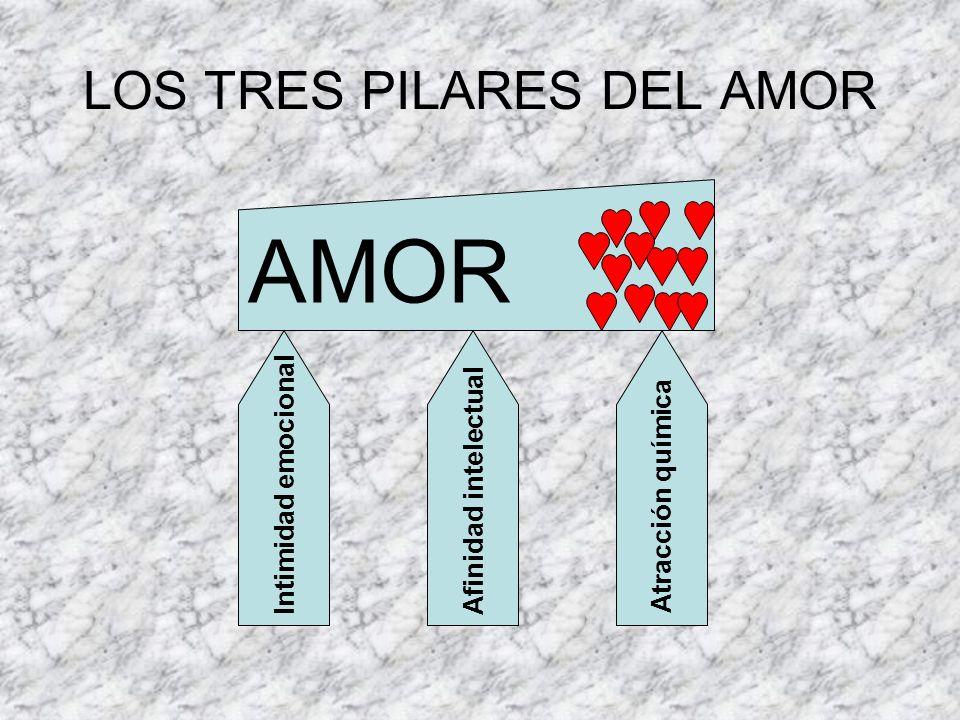 LOS TRES PILARES DEL AMOR AMOR Intimidad emocionalAfinidad intelectualAtracción química