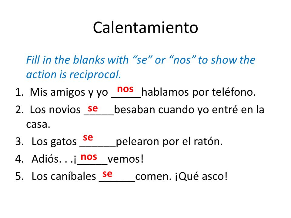 Calentamiento Fill in the blanks with se or nos to show the action is reciprocal. 1. Mis amigos y yo _____hablamos por teléfono. 2. Los novios _____be