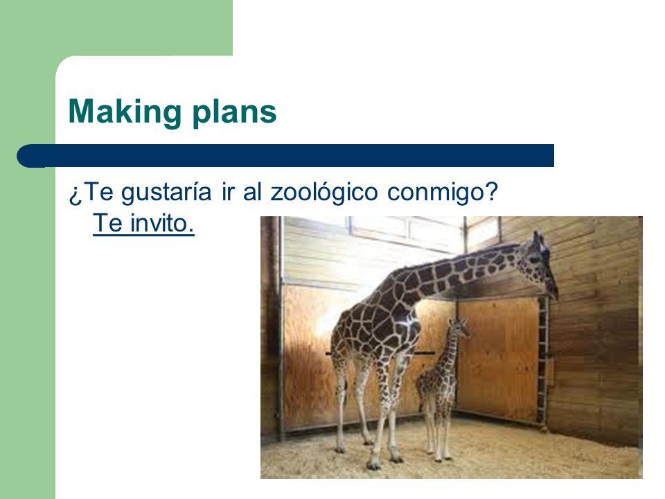 Making plans ¿Te gustaría ir al zoológico conmigo? Te invito.