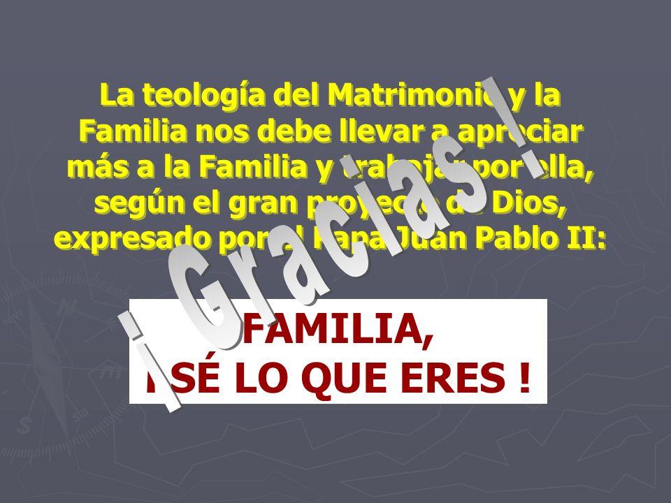 La teología del Matrimonio y la Familia nos debe llevar a apreciar más a la Familia y trabajar por ella, según el gran proyecto de Dios, expresado por