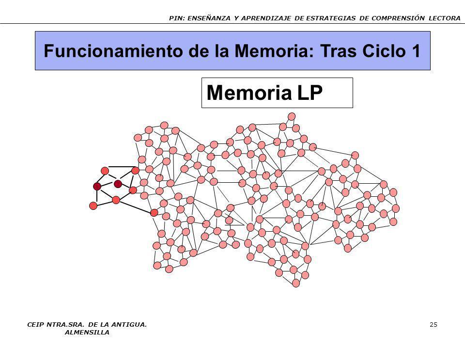 PIN: ENSEÑANZA Y APRENDIZAJE DE ESTRATEGIAS DE COMPRENSIÓN LECTORA CEIP NTRA.SRA. DE LA ANTIGUA. ALMENSILLA 24 Funcionamiento de la Memoria: Ciclo 1 M