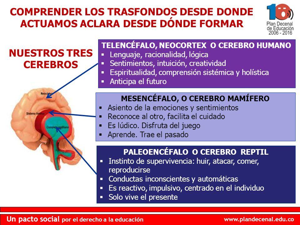 www.plandecenal.edu.co Un pacto social por el derecho a la educación COMPRENDER LOS TRASFONDOS DESDE DONDE ACTUAMOS ACLARA DESDE DÓNDE FORMAR TELENCÉF