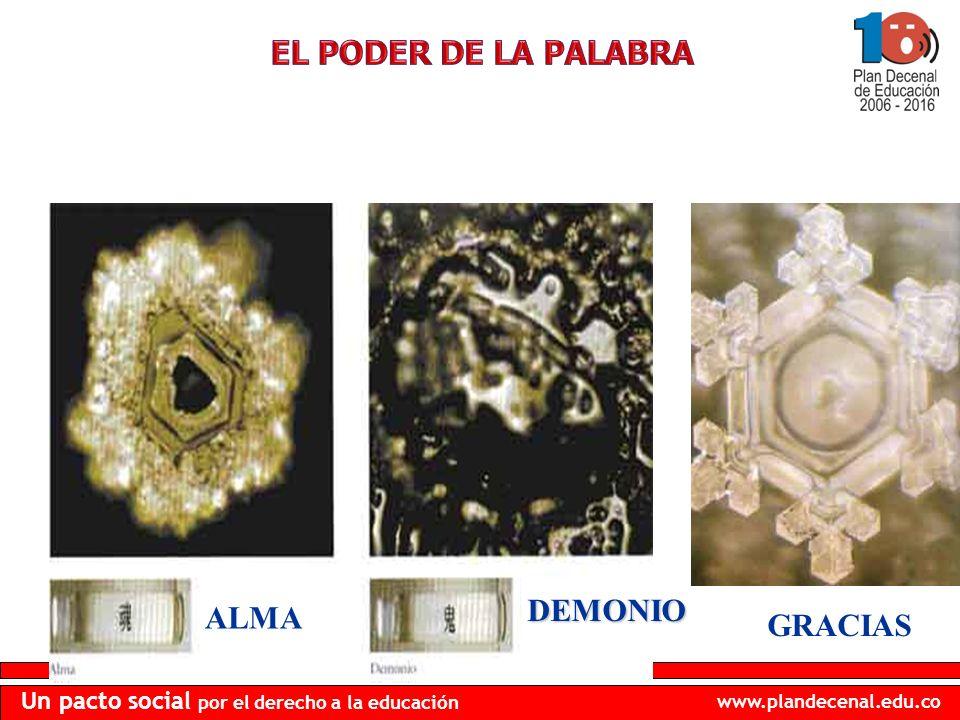 www.plandecenal.edu.co Un pacto social por el derecho a la educación GRACIAS ALMA DEMONIO