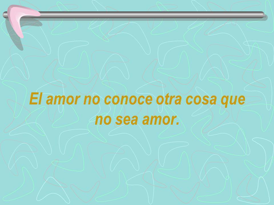 El amor no conoce otra cosa que no sea amor.