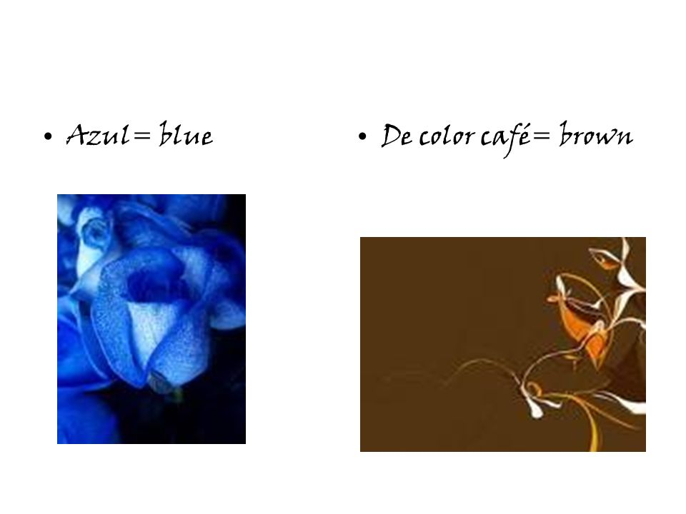 Azul= blueDe color café= brown