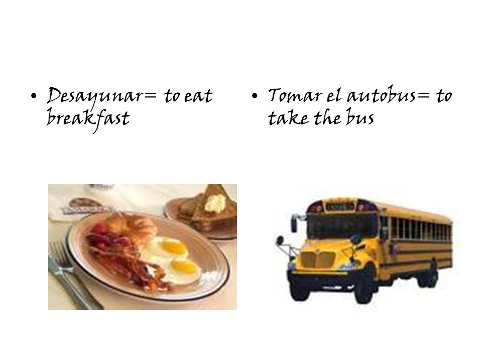 Desayunar= to eat breakfast Tomar el autobus= to take the bus