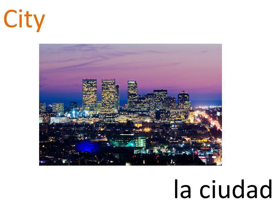 City la ciudad