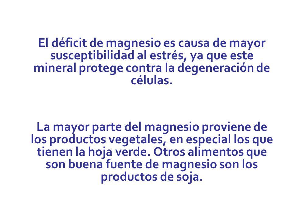 El déficit de magnesio es causa de mayor susceptibilidad al estrés, ya que este mineral protege contra la degeneración de células.