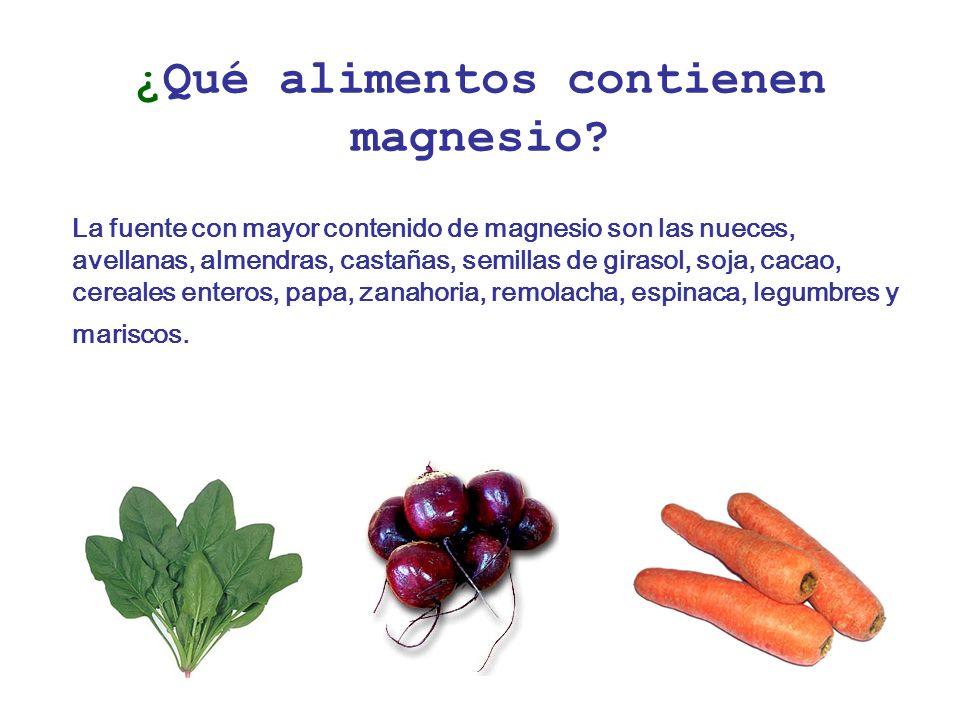 ¿Qué alimentos contienen magnesio.