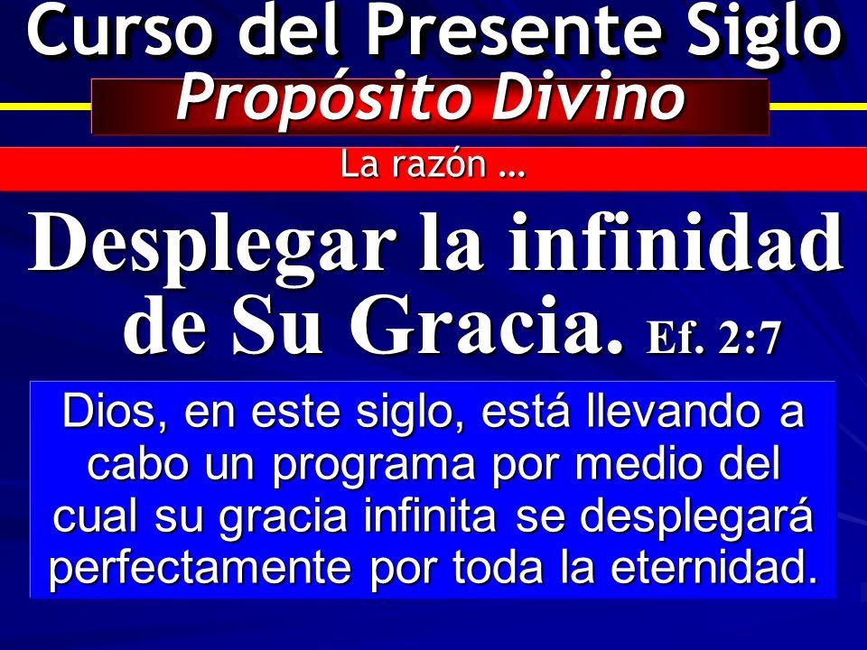 Curso del Presente Siglo Propósito Divino La razón … Desplegar la infinidad de Su Gracia. Ef. 2:7 Dios, en este siglo, está llevando a cabo un program