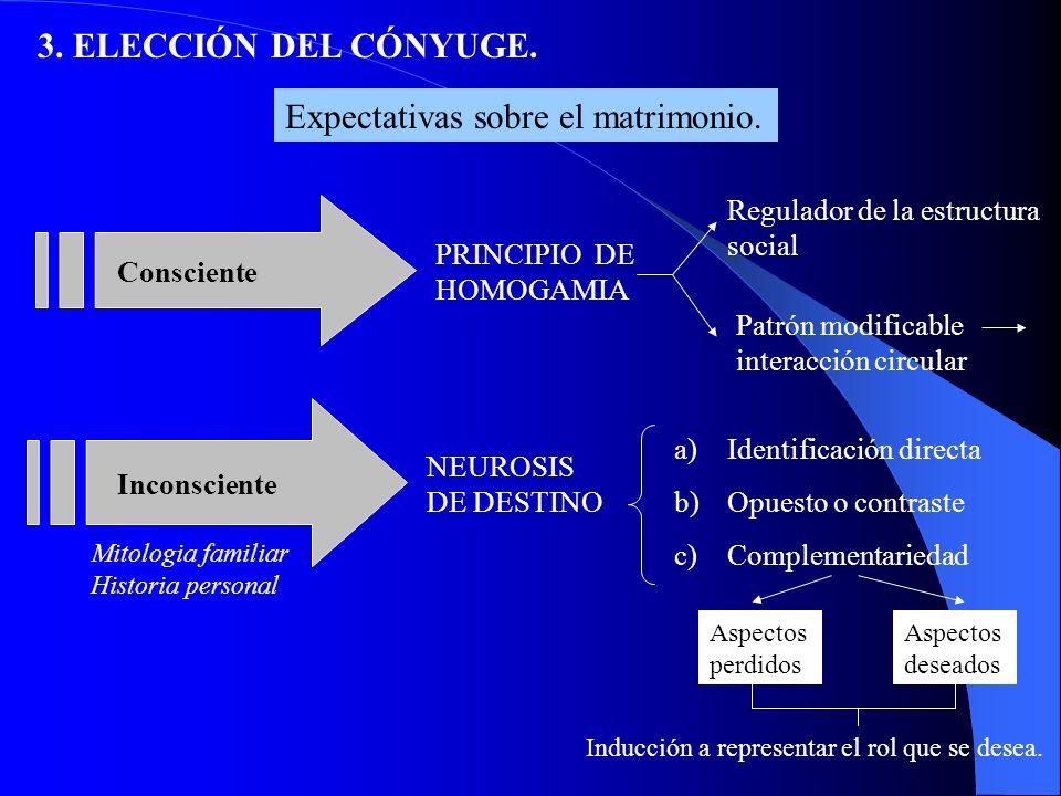 Nivel Social B) NIVELES DE ELECCIÓN: 3.ELECCIÓN DEL CONYUGE.