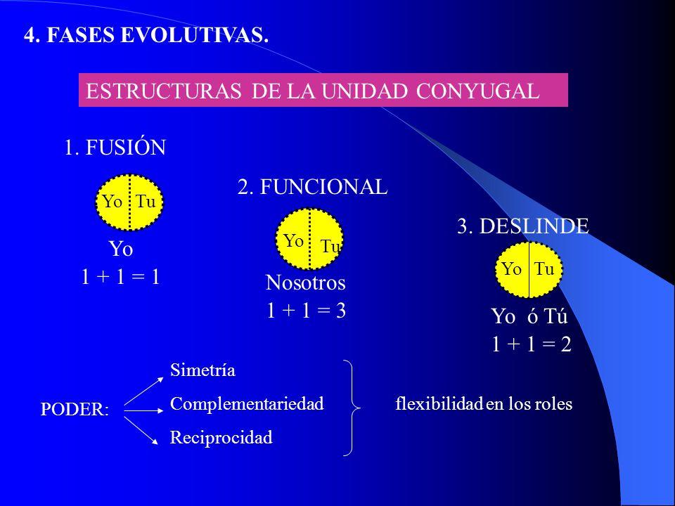 4.FASES EVOLUTIVAS. V.