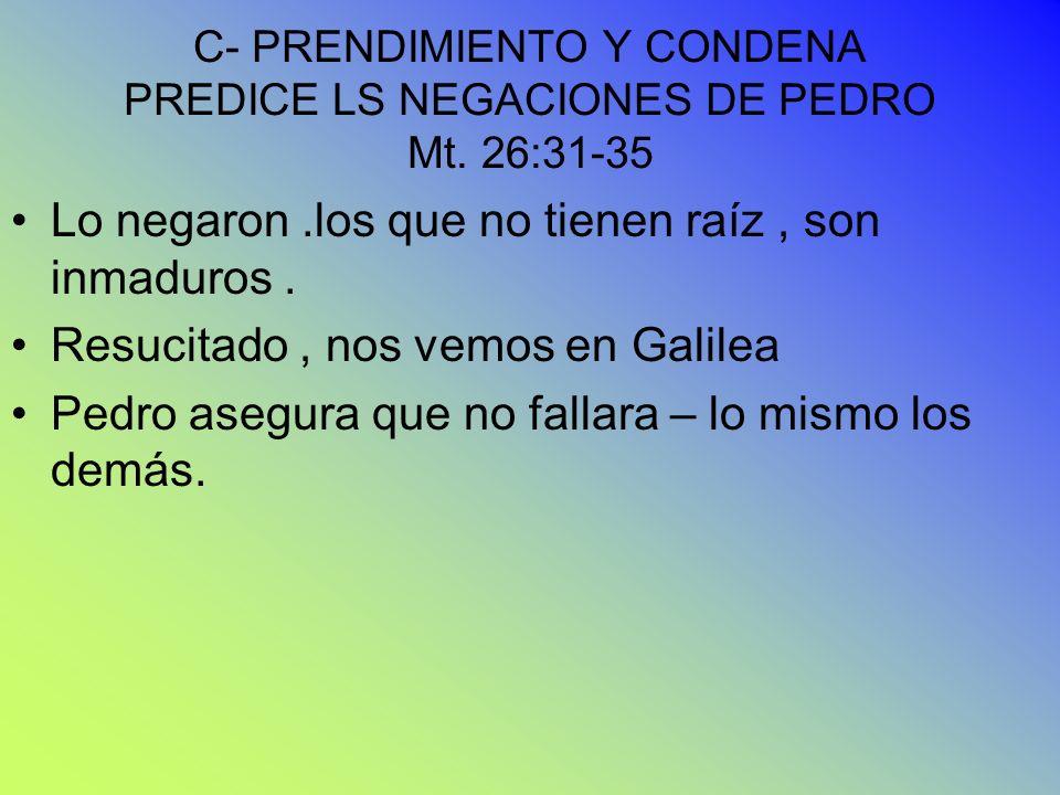 C- PRENDIMIENTO Y CONDENA PREDICE LS NEGACIONES DE PEDRO Mt. 26:31-35 Lo negaron.los que no tienen raíz, son inmaduros. Resucitado, nos vemos en Galil