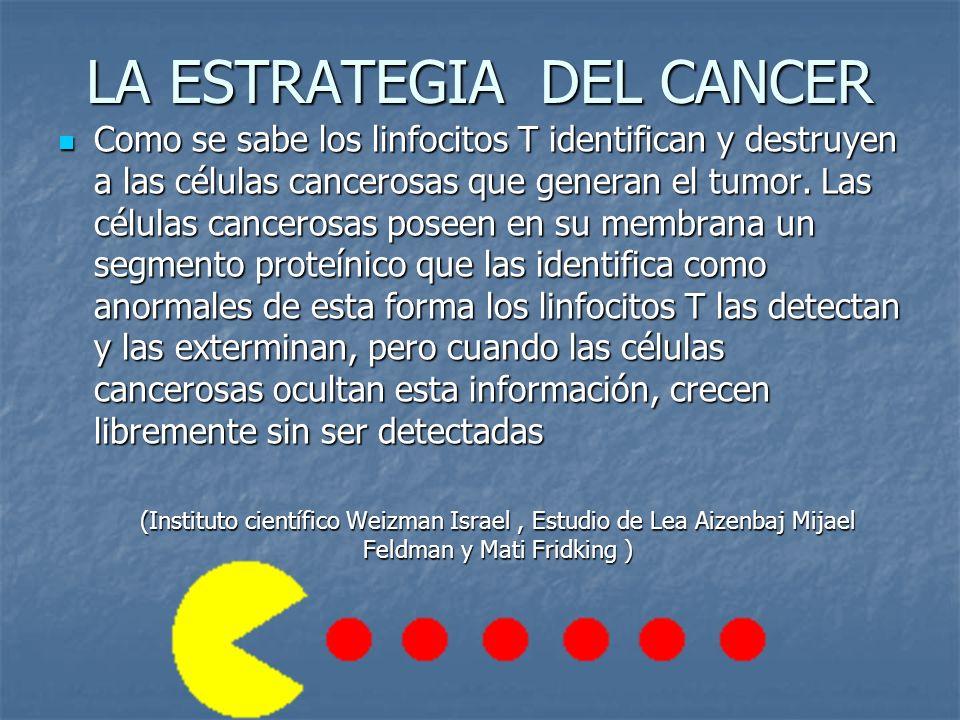 LA ESTRATEGIA DEL CANCER Como se sabe los linfocitos T identifican y destruyen a las células cancerosas que generan el tumor.