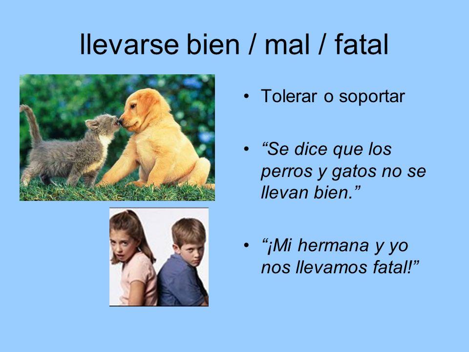 llevarse bien / mal / fatal Tolerar o soportar Se dice que los perros y gatos no se llevan bien. ¡Mi hermana y yo nos llevamos fatal!