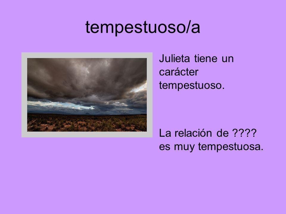 tempestuoso/a Julieta tiene un carácter tempestuoso. La relación de ???? es muy tempestuosa.