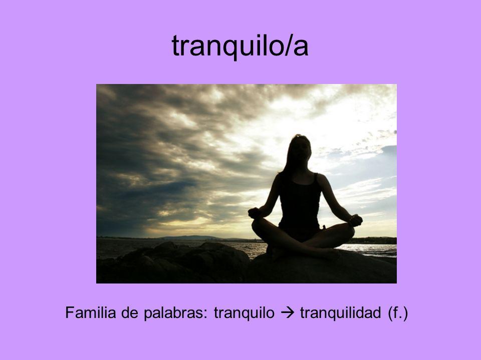 tranquilo/a Familia de palabras: tranquilo tranquilidad (f.)