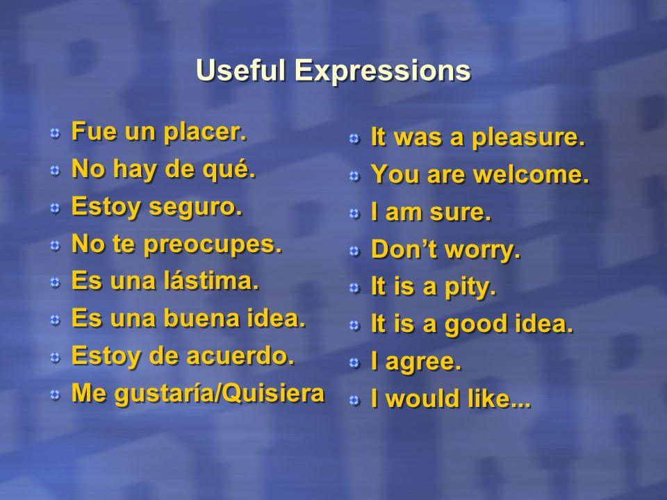 Useful Expressions Fue un placer. No hay de qué. Estoy seguro. No te preocupes. Es una lástima. Es una buena idea. Estoy de acuerdo. Me gustaría/Quisi