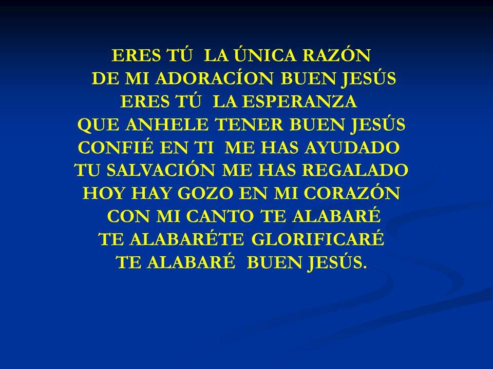 ERES TU LA UNICA RAZON ERES TÚ LA ÚNICA RAZÓN DE MI ADORACÍON BUEN JESÚS ERES TÚ LA ESPERANZA QUE ANHELE TENER BUEN JESÚS CONFIÉ EN TI ME HAS AYUDADO