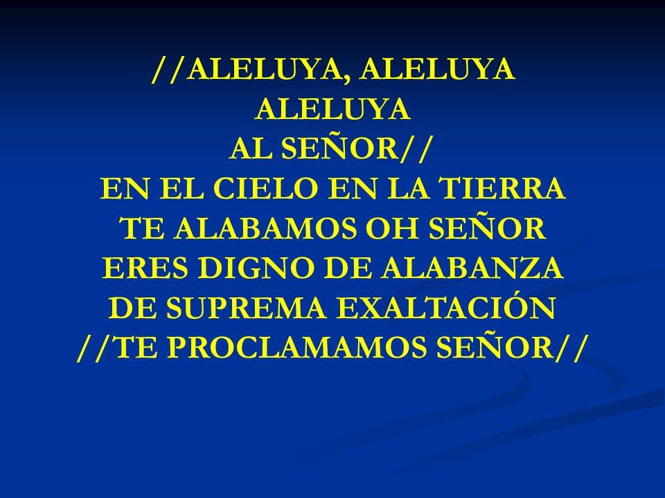 ALELUYA, ALELUYA //ALELUYA, ALELUYA ALELUYA AL SEÑOR// EN EL CIELO EN LA TIERRA TE ALABAMOS OH SEÑOR ERES DIGNO DE ALABANZA DE SUPREMA EXALTACIÓN //TE