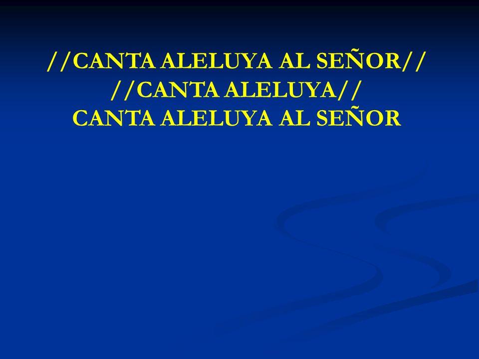 CANTA ALELUYA AL SEÑOR //CANTA ALELUYA AL SEÑOR// //CANTA ALELUYA// CANTA ALELUYA AL SEÑOR