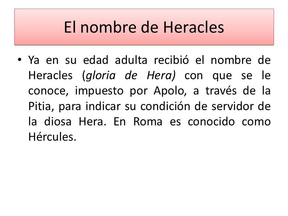 El nombre de Heracles Ya en su edad adulta recibió el nombre de Heracles (gloria de Hera) con que se le conoce, impuesto por Apolo, a través de la Pit