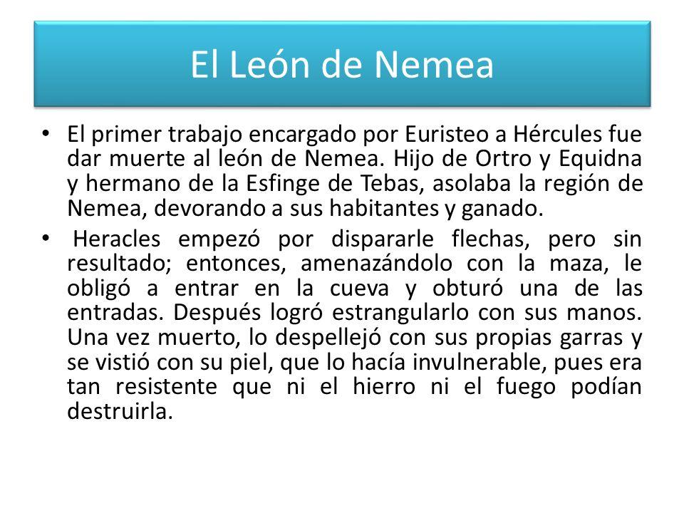 El León de Nemea El primer trabajo encargado por Euristeo a Hércules fue dar muerte al león de Nemea. Hijo de Ortro y Equidna y hermano de la Esfinge