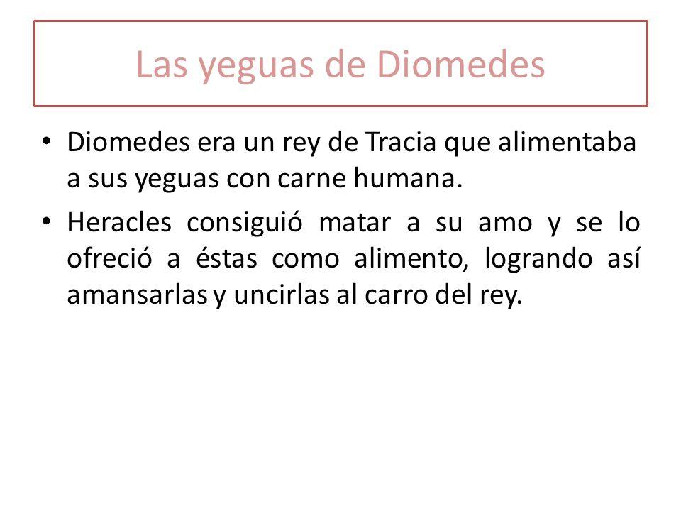 Las yeguas de Diomedes Diomedes era un rey de Tracia que alimentaba a sus yeguas con carne humana. Heracles consiguió matar a su amo y se lo ofreció a