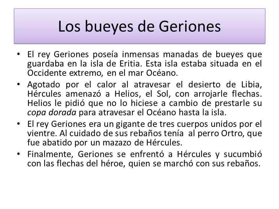 Los bueyes de Geriones El rey Geriones poseía inmensas manadas de bueyes que guardaba en la isla de Eritia. Esta isla estaba situada en el Occidente e