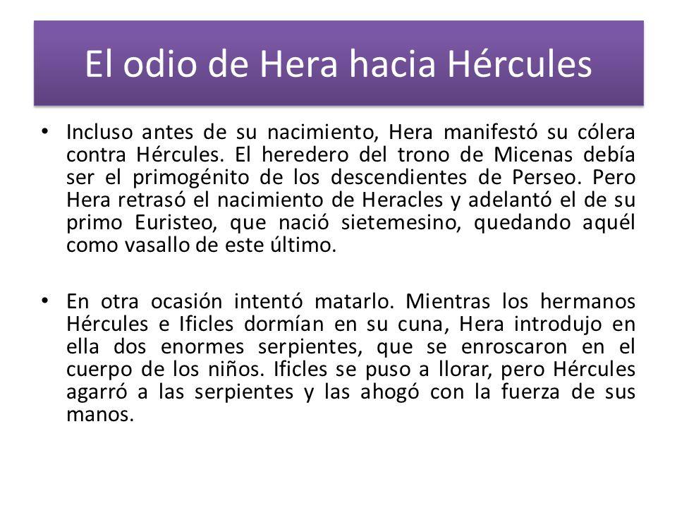 El odio de Hera hacia Hércules Incluso antes de su nacimiento, Hera manifestó su cólera contra Hércules. El heredero del trono de Micenas debía ser el