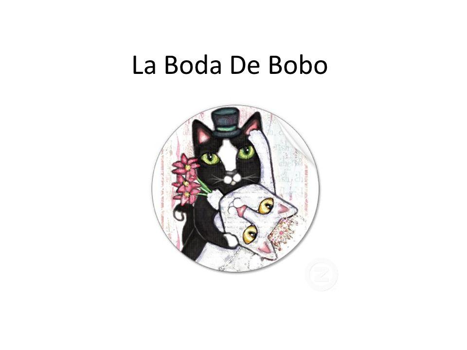 La Boda De Bobo