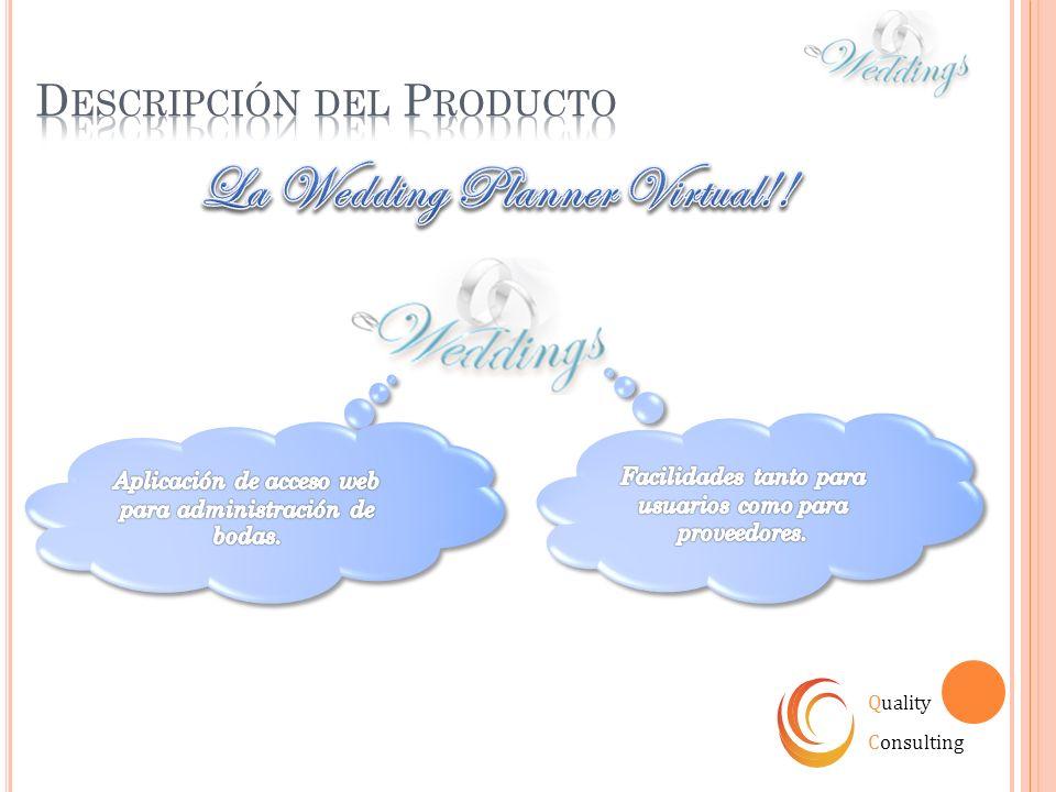 Quality Consulting Diversidad Aplicación Web Estrategia A futuro…