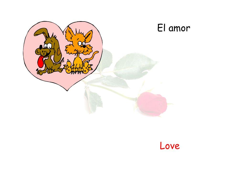 El amor Love