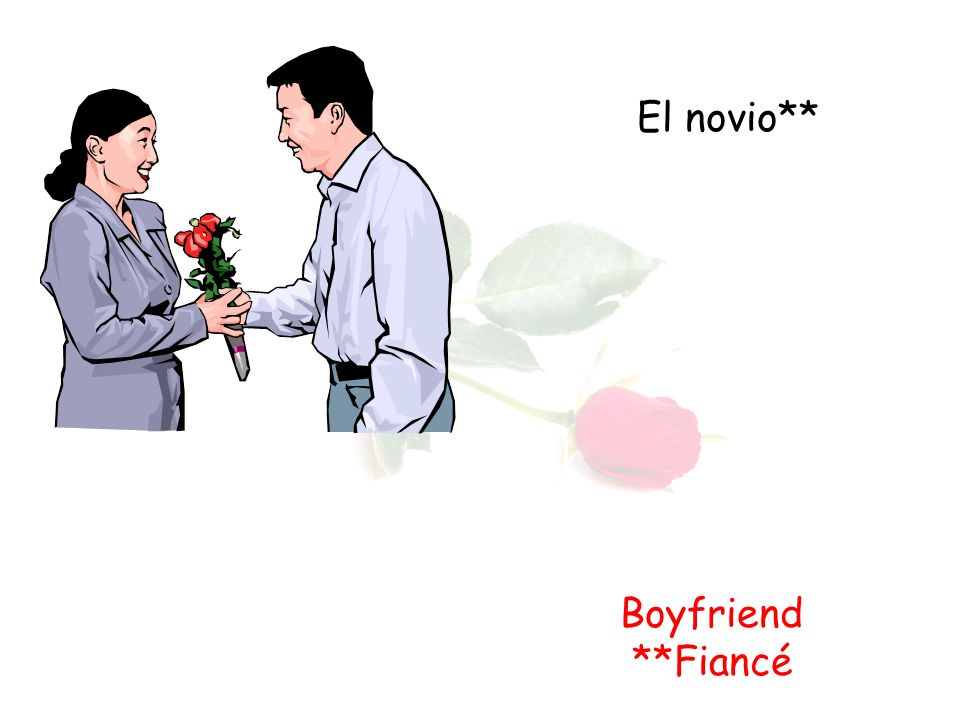 El novio** Boyfriend **Fiancé