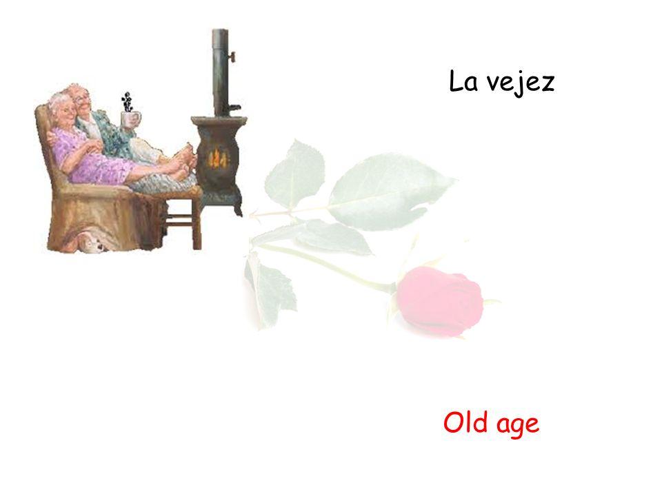 La vejez Old age