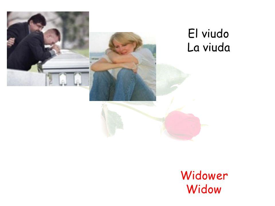 El viudo La viuda Widower Widow