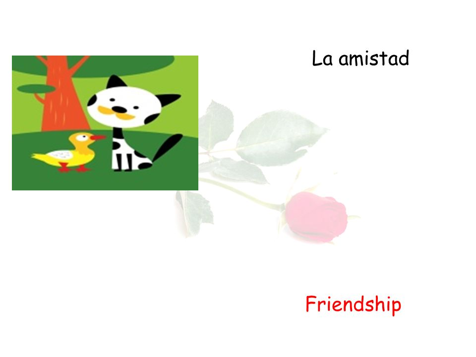 La amistad Friendship