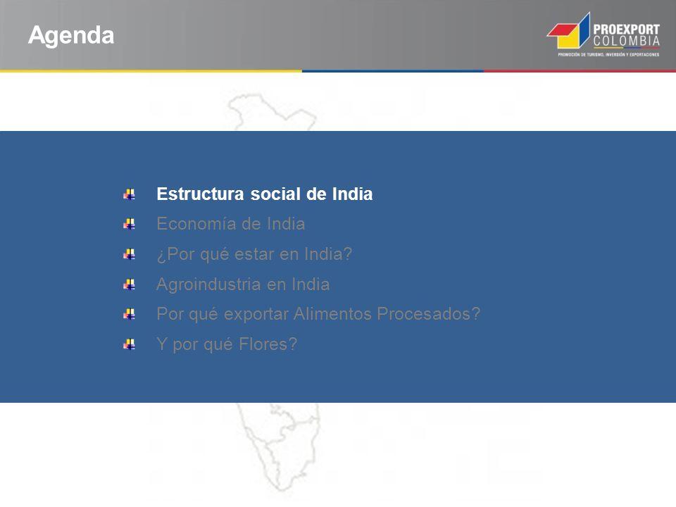 Agenda Estructura social de India Economía de India ¿Por qué estar en India? Agroindustria en India Por qué exportar Alimentos Procesados? Y por qué F