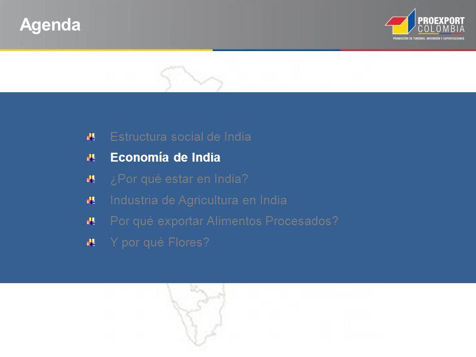 Agenda Estructura social de India Economía de India ¿Por qué estar en India? Industria de Agricultura en India Por qué exportar Alimentos Procesados?