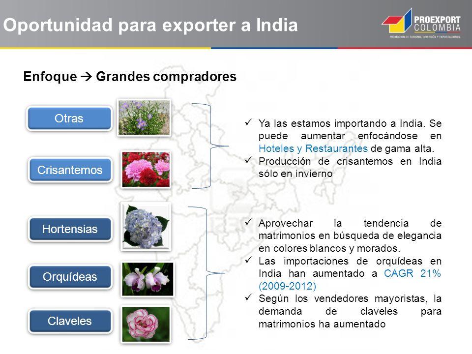 Oportunidad para exporter a India Enfoque Grandes compradores Otras Crisantemos Hortensias Orquídeas Ya las estamos importando a India. Se puede aumen