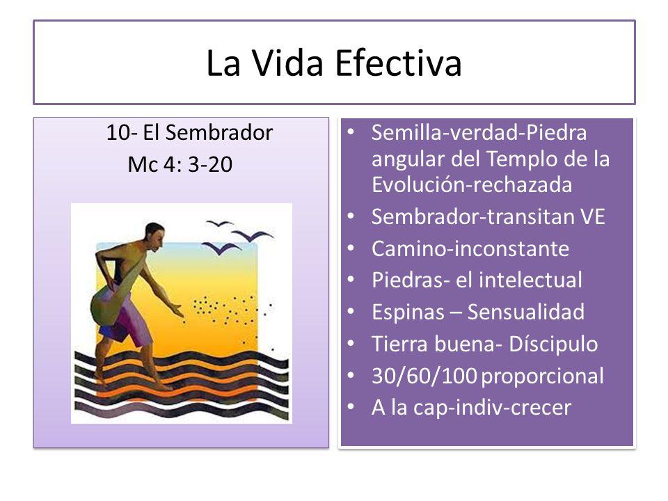 La Vida Efectiva 10- El Sembrador Mc 4: 3-20 10- El Sembrador Mc 4: 3-20 Semilla-verdad-Piedra angular del Templo de la Evolución-rechazada Sembrador-