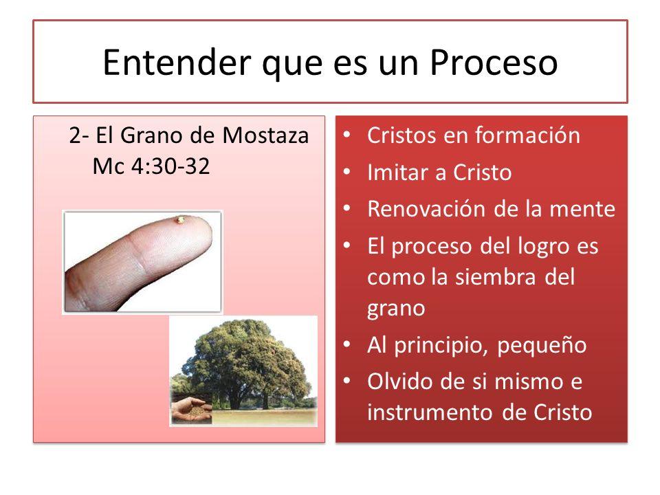Entender que es un Proceso 2- El Grano de Mostaza Mc 4:30-32 Cristos en formación Imitar a Cristo Renovación de la mente El proceso del logro es como