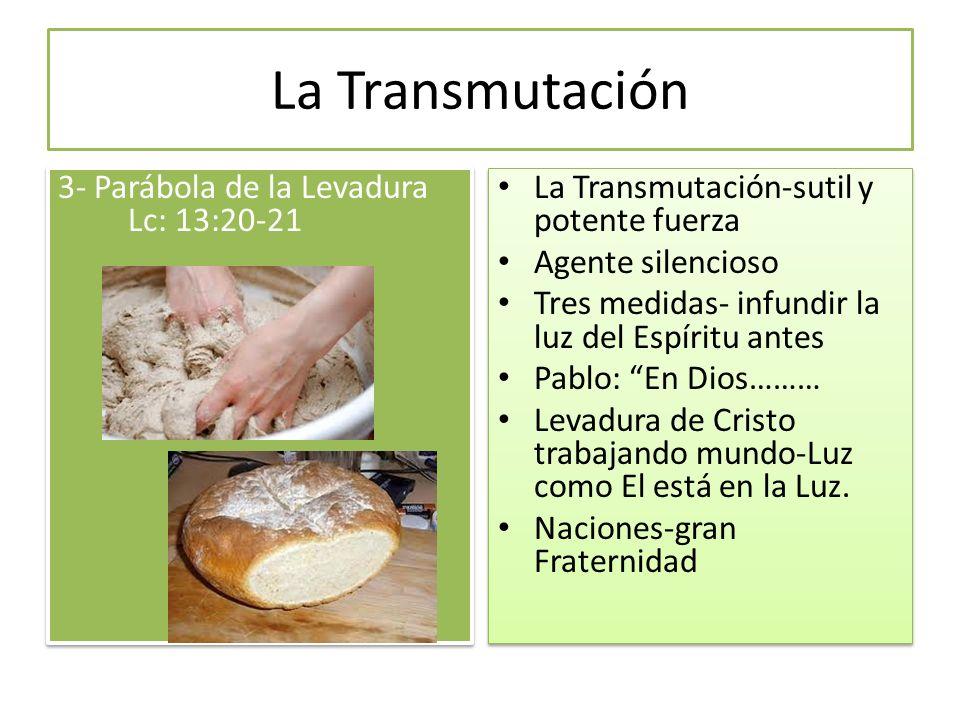 La Transmutación 3- Parábola de la Levadura Lc: 13:20-21 La Transmutación-sutil y potente fuerza Agente silencioso Tres medidas- infundir la luz del E